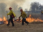 The team manages the flames with rakes, brooms, water sprayers and a leaf blower. Using these tools the team can redirect or put out the fire when needed.